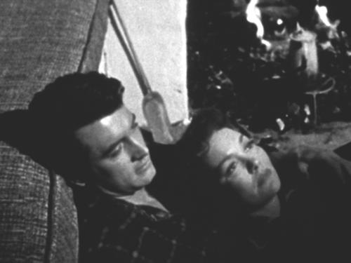 «Всё, что дозволено небесами». Реж. Дуглас Сёрк. 1955