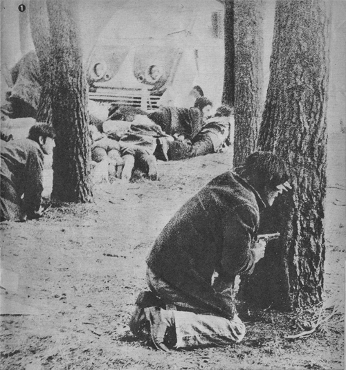 Беспорядки в аэропорту Эсейсы, 1973