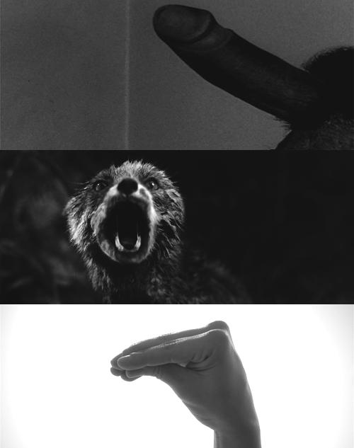 Кадры из фильмов «Персона», «Антихрист», «Нимфоманка. Часть 2»