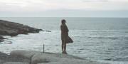 Стозевно и лаяй: «Левиафан» как самый обсуждаемый фильм года