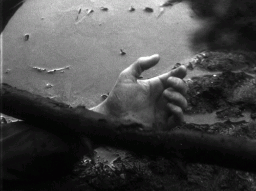 «Территория». Реж. Рауль Руис, 1981