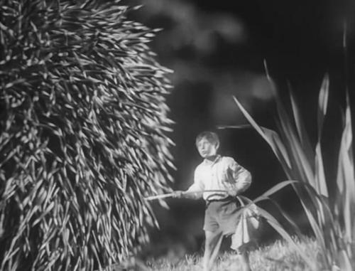 «Полесские робинзоны». Реж. И. Бахар, П. Молчанов, 1934