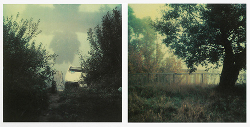 Из книги «Instant Light. Tarkovsky Polaroids»