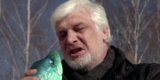 «Прорубь»: Рыба об лед