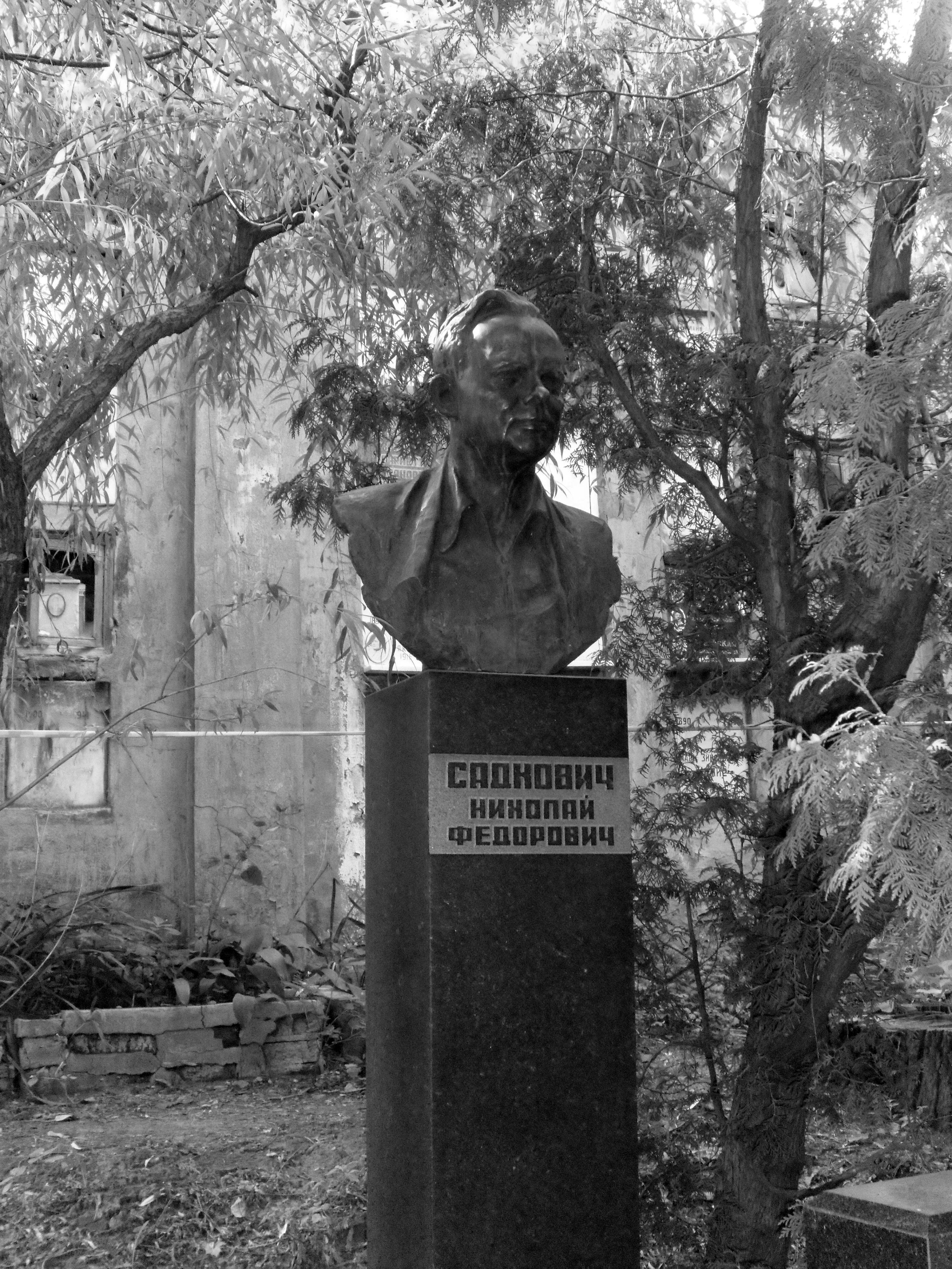 Могила Николая Садковича на Новом Донском кладбище в Москве